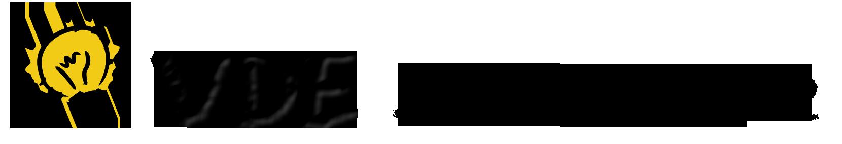VDE Schulinitiative